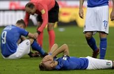 Cận cảnh Italy lần đầu tiên vắng mặt ở World Cup sau 60 năm