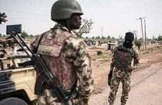 Quân đội Nigeria giải phóng thị trấn Magumeri khỏi tay Boko Haram