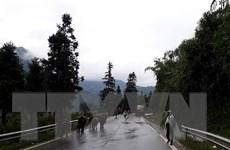 Nông dân Sa Pa chủ động đưa gia súc đi tránh rét, sương muối