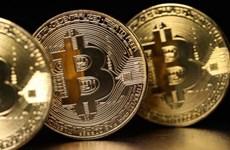 'Đồng Bitcoin có thể đe dọa đến sự ổn định của tài chính thế giới'