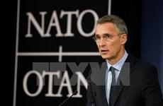 NATO nhất trí mở rộng hợp tác EU trên cơ sở những giá trị chung