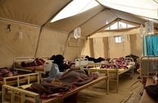 Yemen: Liên quân Arab không kích khiến 92 tù nhân thương vong