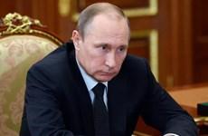 Bầu cử Nga: Tổng thống Putin đích thân nộp hồ sơ tranh cử