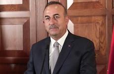 """Thổ Nhĩ Kỳ muốn tìm kiếm """"khởi đầu mới"""" trong quan hệ với Đức"""