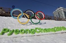 Olympic Pyeongchang sẽ là nội dung chính của đối thoại liên Triều