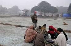 Miền Bắc, miền Đông Ấn Độ chìm trong sương mù và giá lạnh