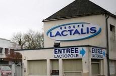 Hãng Lactalis đối mặt với các đơn kiện trong vụ bê bối sữa bẩn