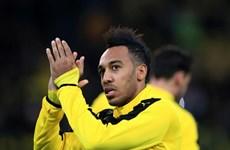Arsenal chiêu mộ Aubameyang: Hy vọng cuối cùng của HLV Wenger
