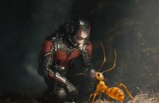 Hãng Marvel tung trailer Chiến Binh Ong bên cạnh Người Kiến