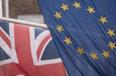 EU xem xét biện pháp ngăn ngừa Anh cạnh tranh không lành mạnh