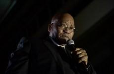 Nam Phi: ANC thuyết phục Tổng thống Zuma tự nguyện từ chức