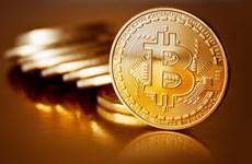 Australia ghi nhận hơn 1.200 vụ kiện lừa đảo liên quan Bitcoin