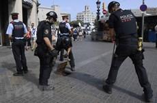 Loạt vụ tấn công tại Tây Ban Nha: Pháp bắt giữ thêm 3 nghi can