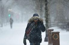 Mỹ: Thành phố New York ráo riết chuẩn bị ứng phó với bão tuyết