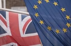 EU đòi Anh bồi thường vì làm ngơ cho công ty Trung Quốc gian lận