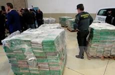 Tây Ban Nha, Bồ Đào Nha triệt phá mạng lưới buôn ma tuý lớn