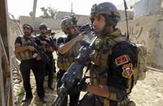 Iraq: IS bắt cóc cảnh sát liên bang tại miền Bắc thủ đô Baghdad