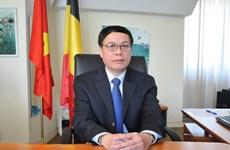 Việt Nam-Bỉ: Cơ hội nâng tầm quan hệ hợp tác lên tầm cao mới