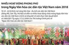 [Infographics] Nhiều hoạt động trong Ngày Văn hóa các dân tộc Việt Nam