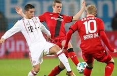 Leverkusen quyết cản Bayern-Heynckes tái hiện 'cú ăn ba' lịch sử
