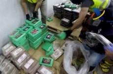 Tây Ban Nha thu giữ lượng ma túy kỷ lục tại cảng Algeciras