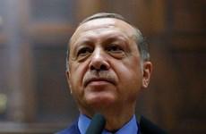 Thổ Nhĩ Kỳ: Đảng cầm quyền đề cử ông Erdogan làm ứng cử viên
