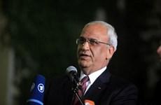 PLO kêu gọi tẩy chay lễ khai trương Đại sứ quán Mỹ tại Jerusalem