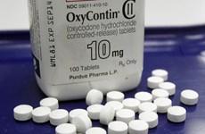 Purdue Pharma tiếp tục bị kiện vụ bê bối thuốc giảm đau Opioid