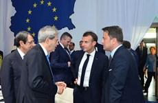 EU sẵn sàng mở cửa thị trường, tránh cuộc chiến thương mại với Mỹ