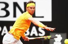 Nadal hạ gục Djokovic, sẵn sàng đối đầu nhà đương kim vô địch