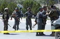 Lực lượng an ninh Afghanistan tiêu diệt 24 tay súng Taliban