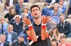 Roland Garros: Hiện tượng người Italy khiến Djokovic ôm hận