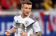 """Marco Reus: """"Cháy hết mình"""" trong kỳ World Cup đầu tiên"""