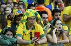 Người dân Brazil ngày càng suy giảm tình yêu với bóng đá?