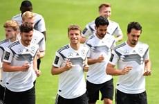 Lịch trực tiếp World Cup 2018 ngày 17/6: Đức, Brazil nhập cuộc