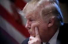 17 bang tại Mỹ kiện Tổng thống Trump vì chính sách nhập cư
