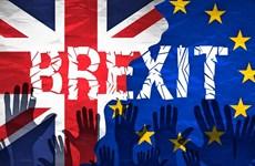 """Anh đang hướng tới một tiến trình Brexit """"mềm"""" đầy chông gai?"""