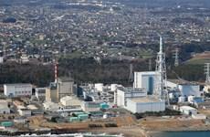 Nhật Bản siết chặt các quy định vận hành nhà máy điện hạt nhân