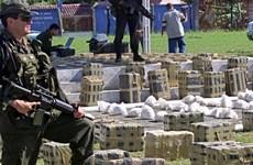 Colombia: Buôn bán ma túy lên tới gần 5,5 tỷ USD mỗi năm