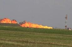 Romania: Rơi máy bay chiến đấu MiG-21, phi công thiệt mạng