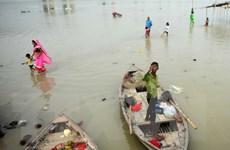 Ấn Độ: Gần 600 người đã thiệt mạng trong đợt mưa lũ kéo dài