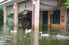 Những hình ảnh mới nhất về tình hình lũ lụt tại Chương Mỹ