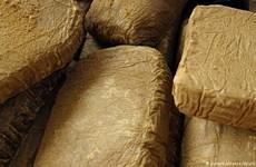 Italy triệt phá phi vụ buôn lậu ma túy trị giá 200 triệu euro