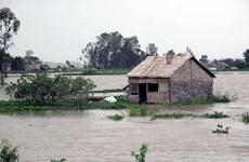 Lũ ở Đồng bằng sông Cửu Long có thể biến động bất thường