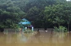 Chủ động di dời người dân đến nơi an toàn tại Thanh Hóa và Yên Bái
