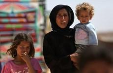"""Thổ Nhĩ Kỳ kêu gọi Nga và Iran ngăn chặn """"thảm họa"""" ở Idlib"""