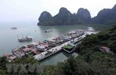 Ứng phó bão số 5: Quảng Ninh thực hiện cấm biển từ 6 giờ ngày 13/9