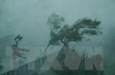Trung Quốc tiếp tục đưa ra cảnh báo đỏ đối với siêu bão Mangkhut