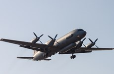 Nga công bố chi tiết về vụ máy bay trinh sát Il-20 bị bắn rơi
