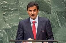 Qatar chỉ trích những biện pháp phong tỏa của các nước Arab